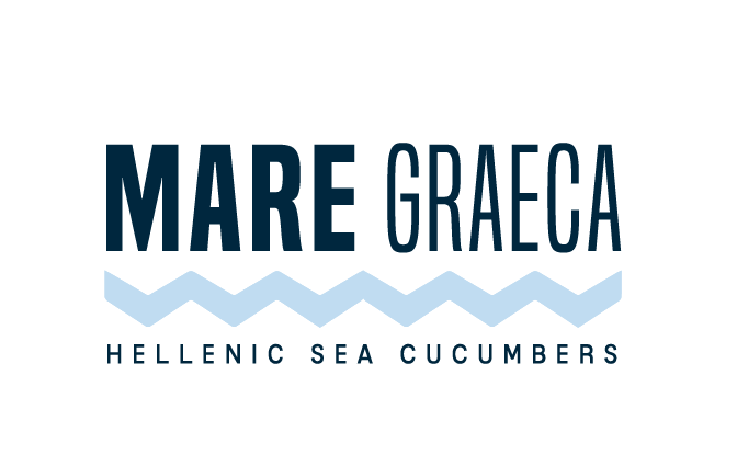 Greek Sea Cucumbers